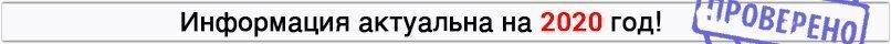 Как проверить штрафы ГИБДД по гос. номеру автомобиля — онлайн проверка своих штрафов ГИБДД по номеру машины в 2020 году